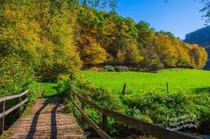 Brücke über die Dhron- Hunolsteiner Klammtour