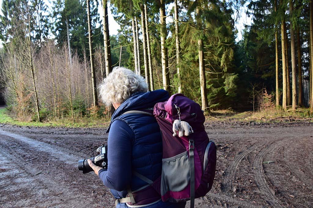 c) Tanja Visinski - Scheck - Steppweste für alle Tage