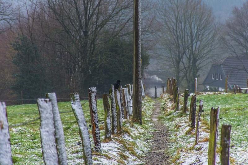 Pilgerpfad und Heerweg (14)