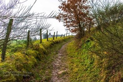 Naturpark Bergisches Land