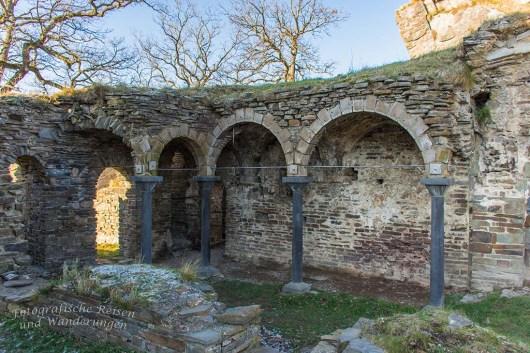 Aussichten und eine Burgruine an der Ahr (150)