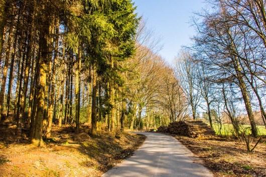 Weg zwischen Loosenau und Klinik