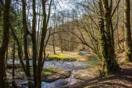 Wo der Heimbach in den Eifgenbach fließt