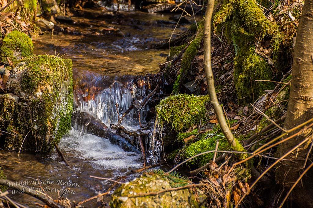 Vereister Zufluss zum Eifgenbach