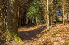 Hinauf zum Thomashof - Endspurt