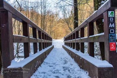 Winter am Eifgenbach (116)