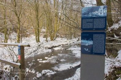 Winter am Eifgenbach (129)