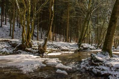 Winter am Eifgenbach (136)