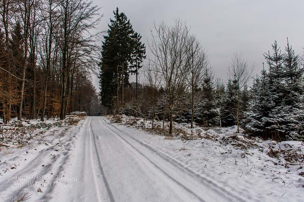 Winter am Eifgenbach (22) - Schneelandschaft