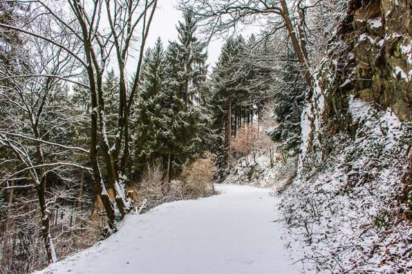 Winter am Eifgenbach (49)