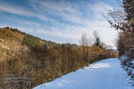 Winter am Eifgenbach (71)