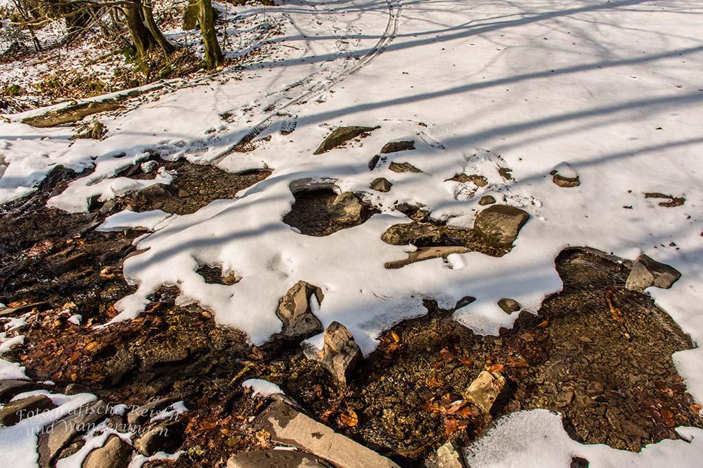 Winter am Eifgenbach (86)