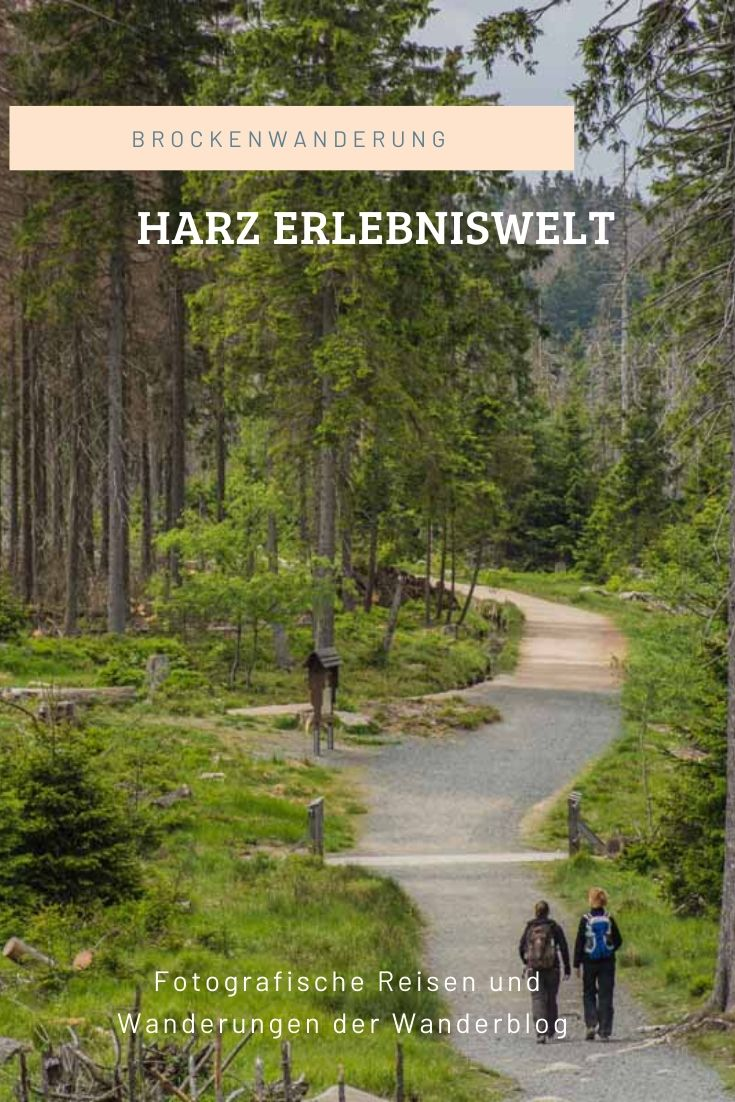 Top Wanderwege im Harz