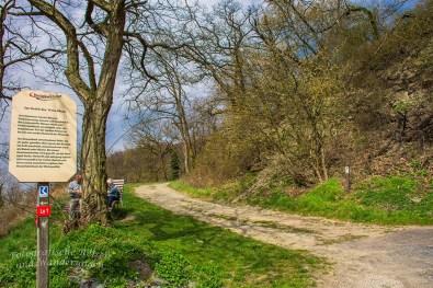 Rheinsteig Rheinbrohl nach Leutesdorf (95)