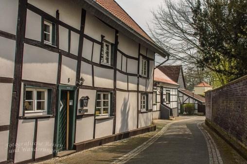Westerholt Schloss und Wald (210)