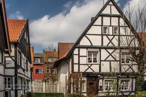 Westerholt Schloss und Wald (216)