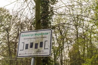 Westerholt Schloss und Wald (75)