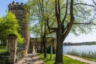 Zwischen Schloss Engers und Steinsee (123)
