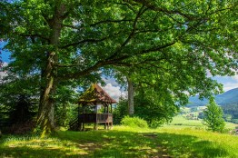 Eckwald-Pavillon