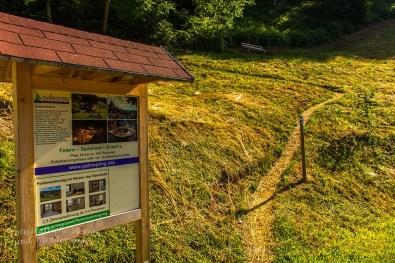 Der Himmelssteig in Bad Peterstal-Griesbach (33)