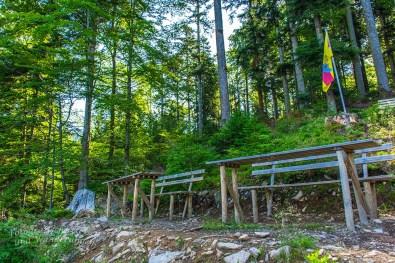 Der Himmelssteig in Bad Peterstal-Griesbach (54)