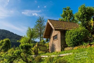 Der Schwarzwaldsteig (22)