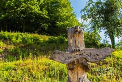 Der Schwarzwaldsteig (25)