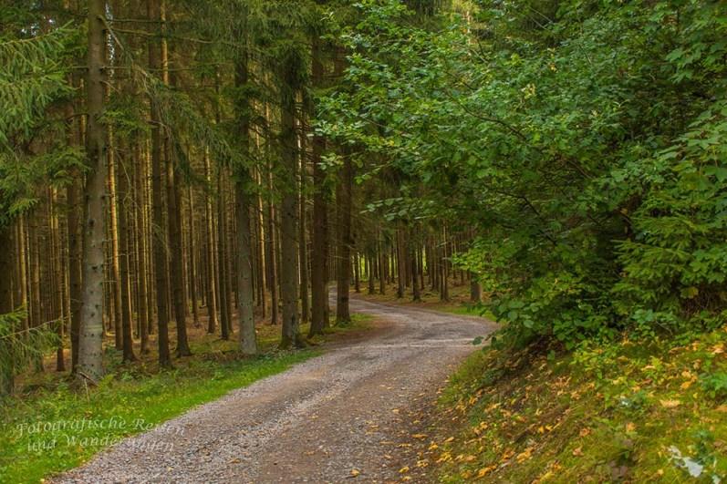 JA, die Wege sind breit, aber sie sind trotzdem sehr schön