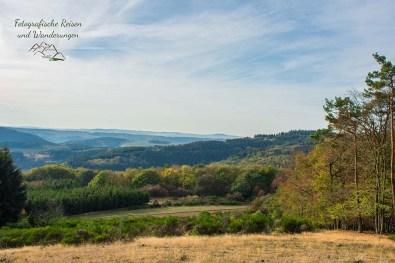 Ausblick vom Wolfsberg