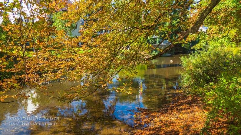 Sayn_Schlosspark (48)