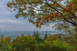 Blick auf Kottenheim, im RÜcken der Steinbruch - Traumpfad Vulkanpfad