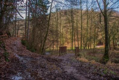 D1 Siefen, Wälder und Höhen (116)