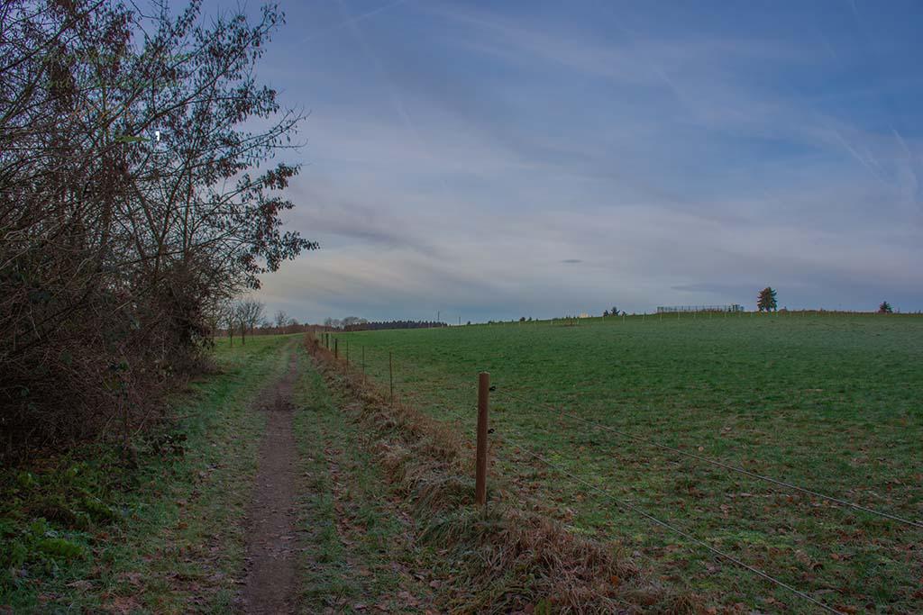 Wiesenweg bei Lindscheid