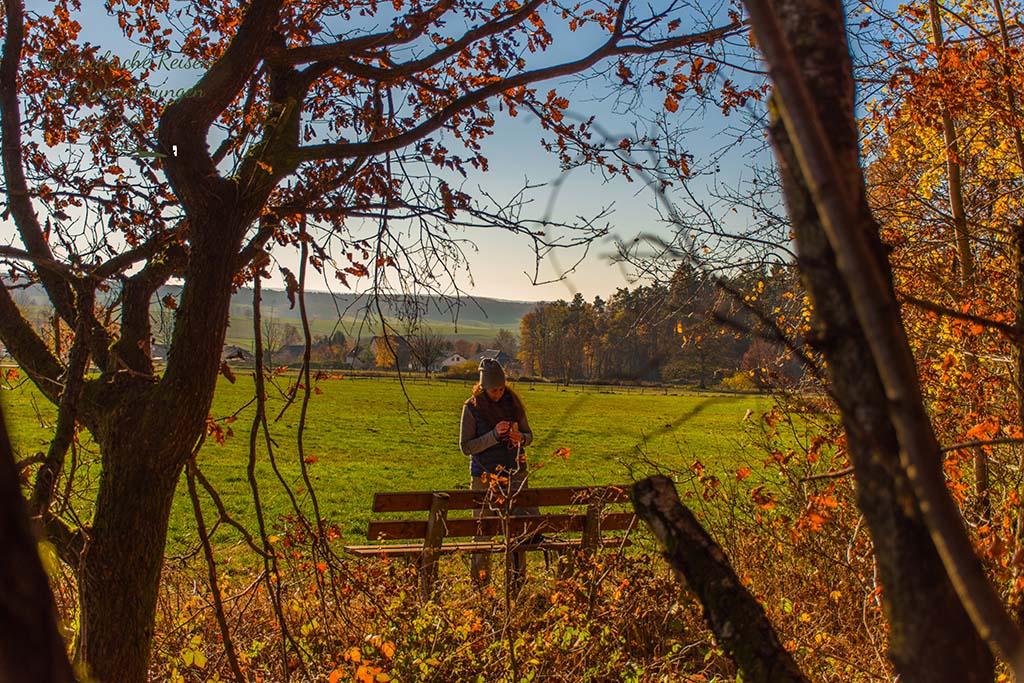 Durch die Blätter eines Baumes fotografiert