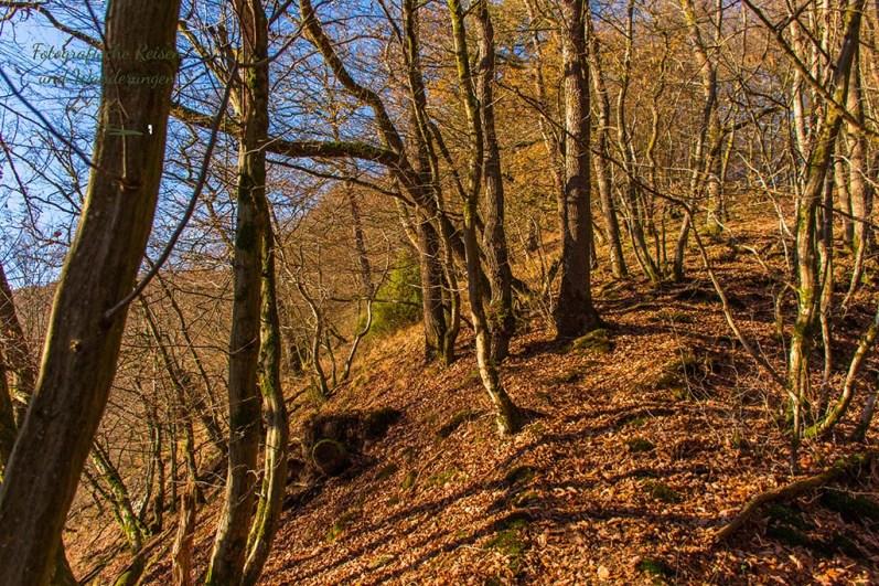 Weltende im Westerwald