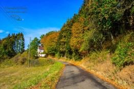 Langsam wendet sich der Weg wieder Richtung Müllenbach