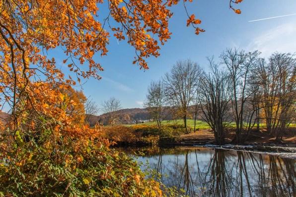 Das himmlisch bunte Herbstlaub