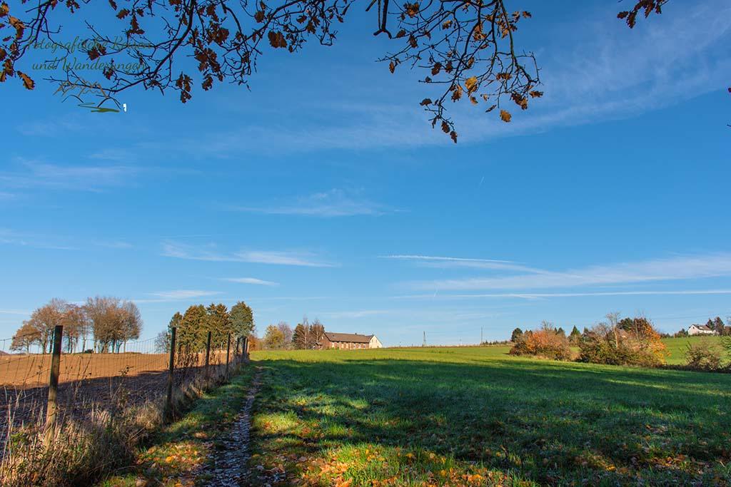 Schmaler Wiesenpfad, Himmel blau, Herbststimmung