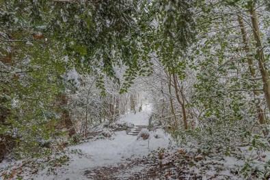 Hinter dem Wasserfall - Rundgang durch Schlosspark Morsbroich