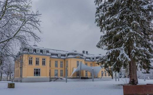 Parkrundgang am Schloss Morsbroich