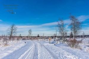Schneebedeckte Wege im Hohen Venn