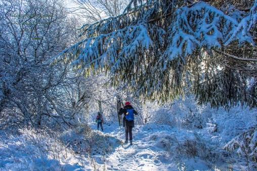 Schneewanderung in Muetzenich (56)