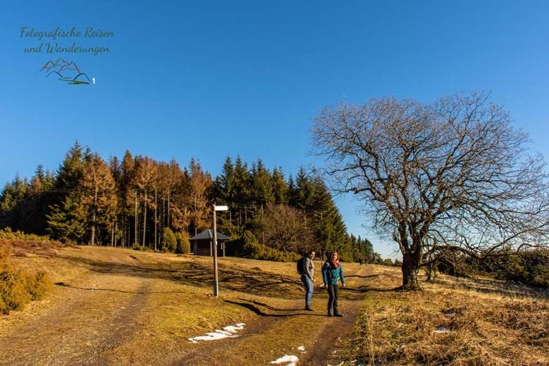Wanderschnekcen auf dem Bergheidenweg