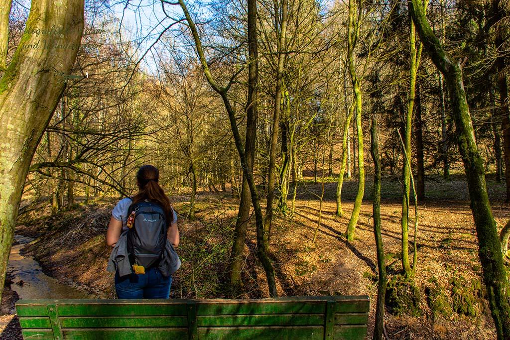 Rast im Wald bei Rösrath