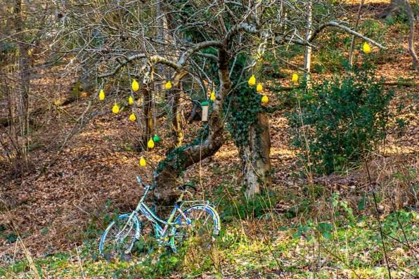 Der Zitronenbaum