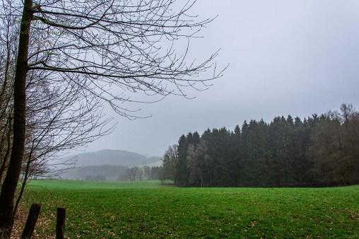Bergischer Panoramasteig _ Benroth nach Holsteinsmühle (12)
