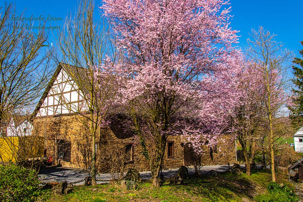 Mühle zu Blankenberg