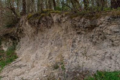 Kalkstein im Hang