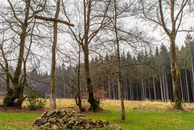 Holzkreuz am Reinartzhof