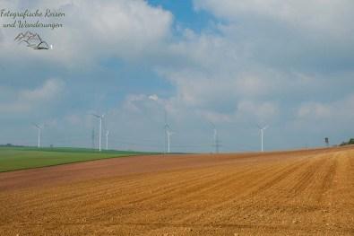 Windräder am Horizont